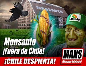 MANS-MONSANTO